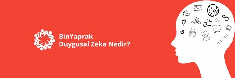 duygusal-zeka-patika-cover.jpg
